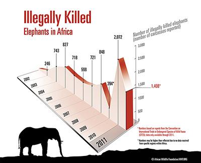 4612_image_Elephant_Poaching_graph Ivory trade u003e Pinterest - farmer resume