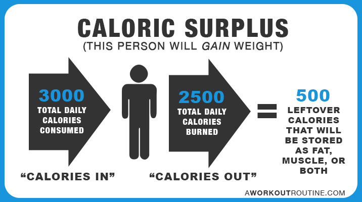How Many Calories Should I Eat A Day To Lose Weight or Gain Muscle? - calorie and fat calculator