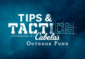 Tips and Tactics Cabelas