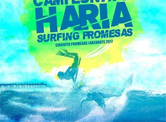Cartel Campeoanto Noviembre de surf y bodyboard