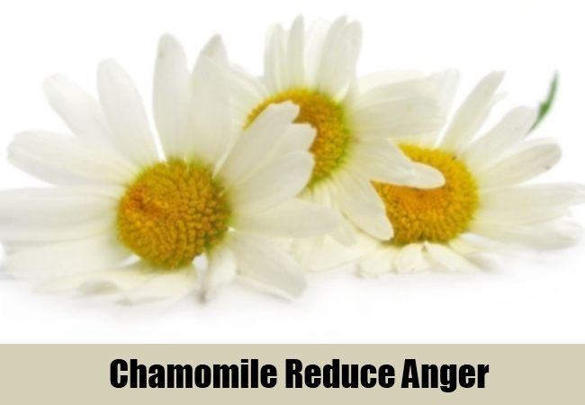 Chamomile Reduce Anger