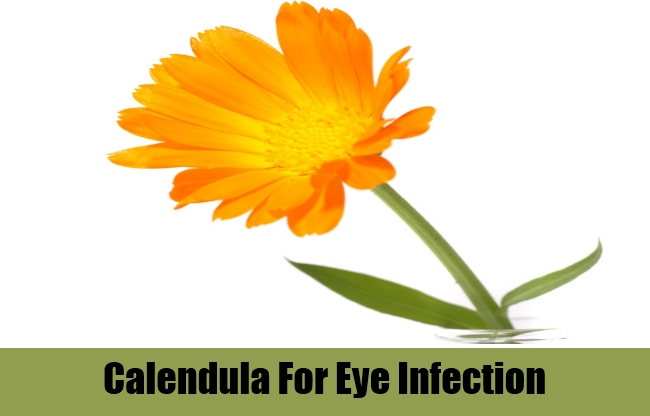 Calendula For Eye Infection