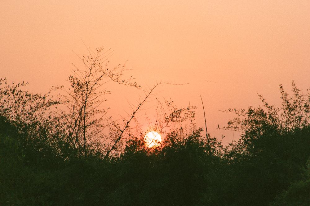A&Y Videography - Uttarayan 2014-72