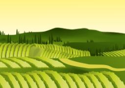 economia agricola 2015