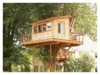 Plans for A Tree House Luxury Brilliant Tree House ...