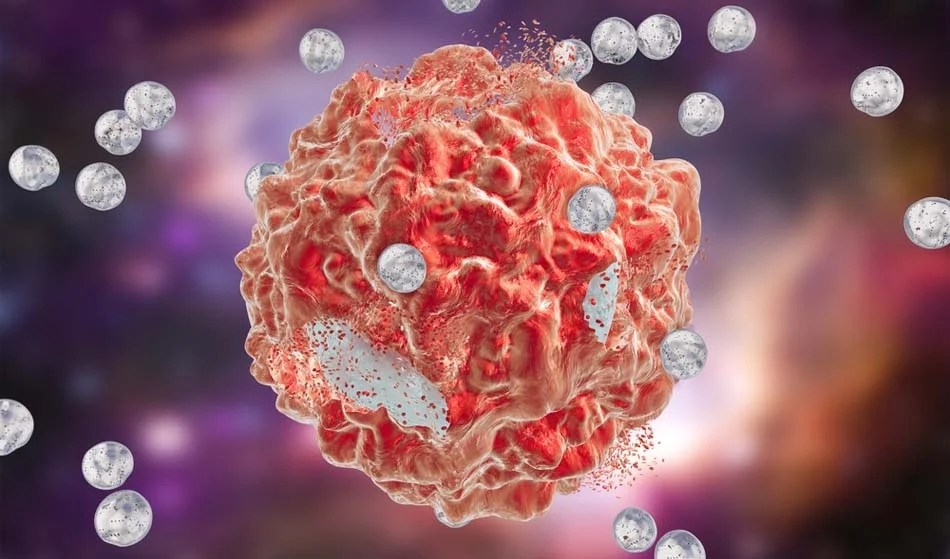Cell Wallpaper Hd The Biological Mechanisms Of Gold Nanoparticle
