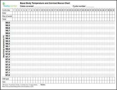 Blank BBT chart BabyCenter