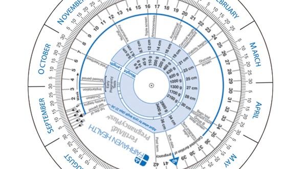Pregnancy Wheel to Determine Due Date BabyMed