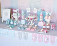 Baby Gender Reveal Party - Baby Shower Ideas - Themes - Games