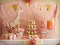 Pink Giraffe Baby Shower Ideas