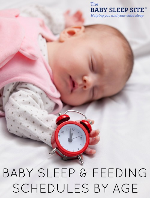 Baby Sleep and Feeding Schedules - Free Sample Baby Schedules The - infant daily schedule