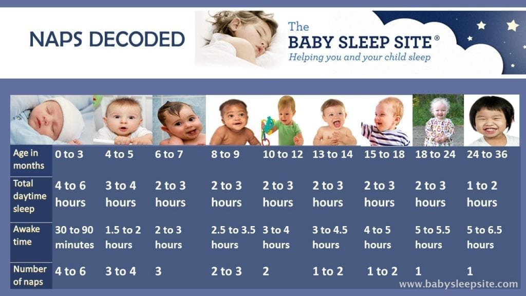 Baby Nap Chart Learn How Long Baby Should Nap, and How Many Naps