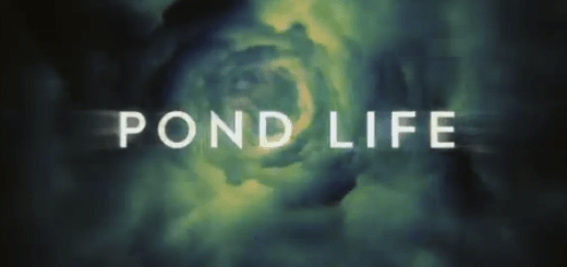 Watch_Doctor_Who_Pond_Life___episode_one