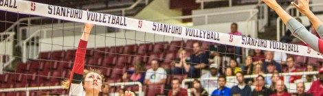 Maples Pavilion,Stanford,Volleyball,women's volleyball