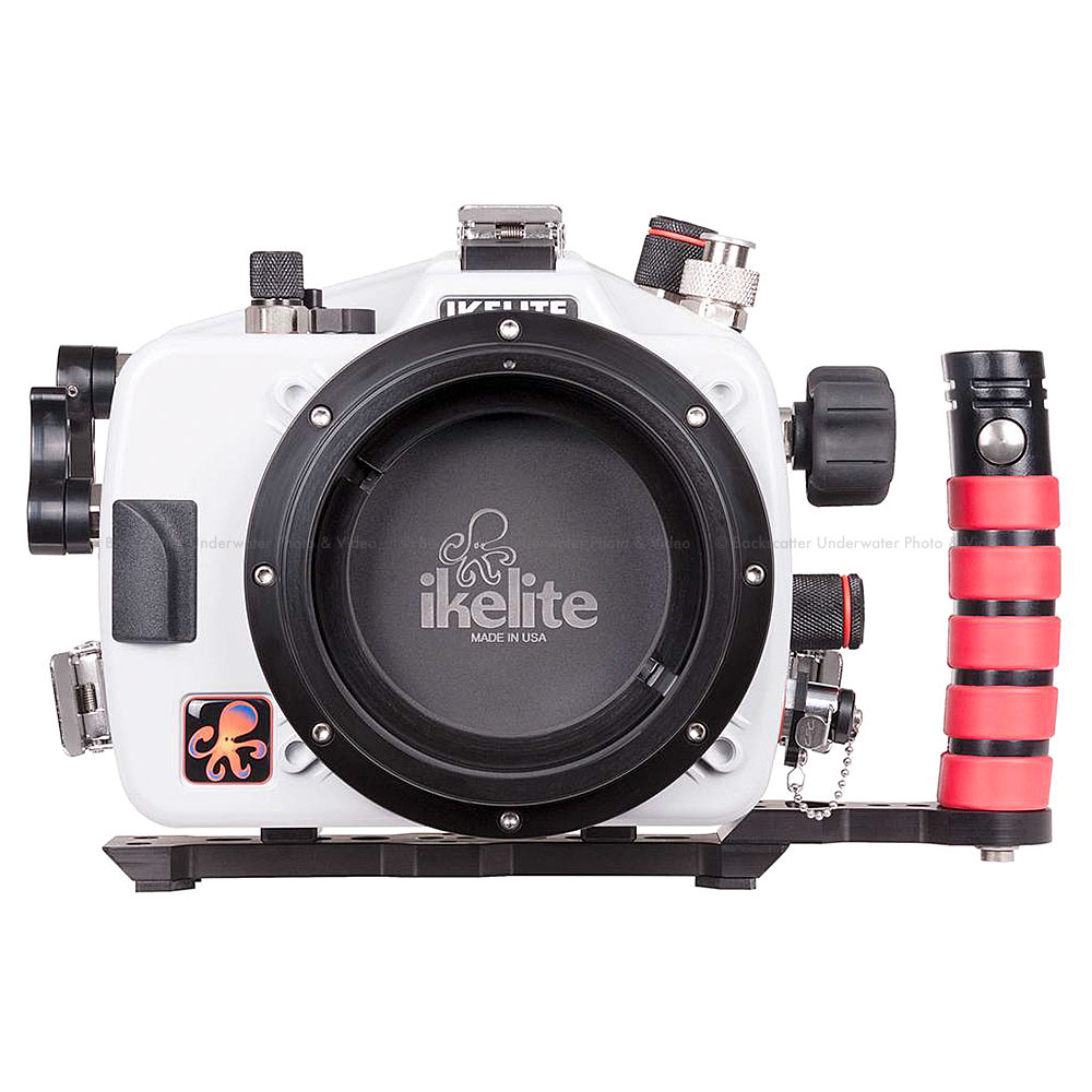 Dining Ikelite Underwater Housing Canon Eos Dslr Cameras Canon 80d Release Date Uk Canon 80d Release Date India dpreview Canon 80d Release Date