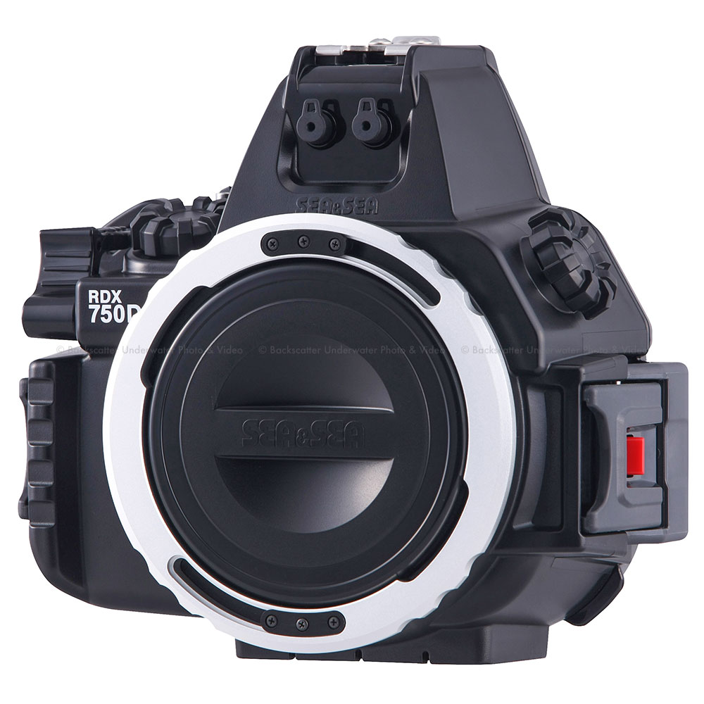 Fullsize Of Canon Eos Rebel T6 Vs T6i