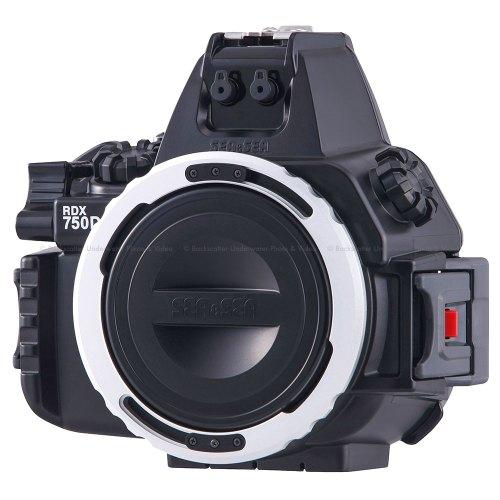 Medium Of Canon Eos Rebel T6 Vs T6i