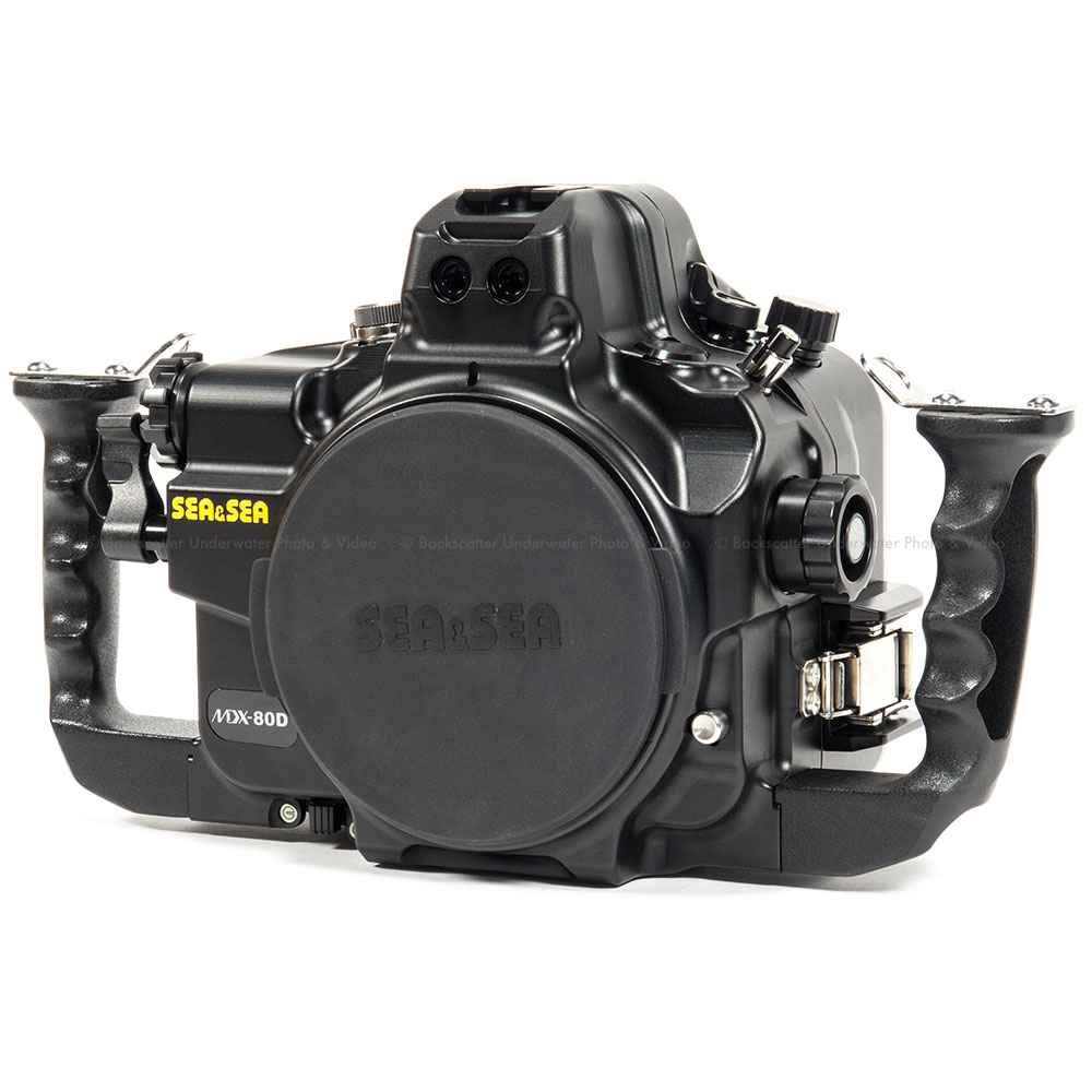 Fullsize Of Nikon D7200 Vs Canon 80d