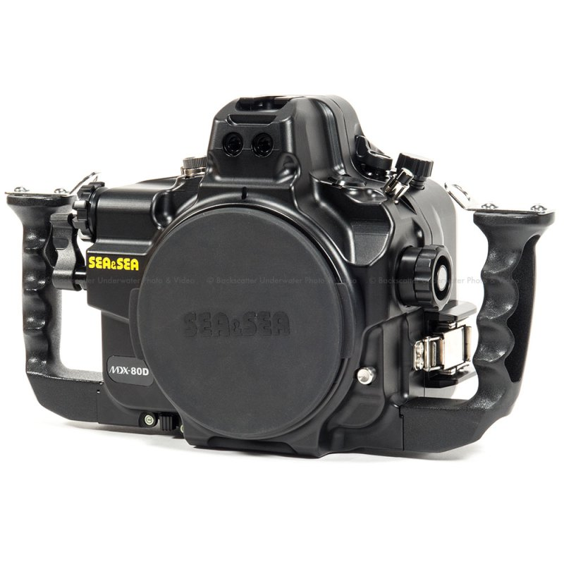 Large Of Nikon D7200 Vs Canon 80d