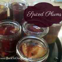 Spiced Plums