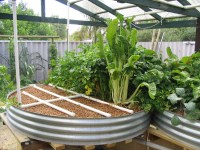 Type of Systems - Backyard Aquaponics