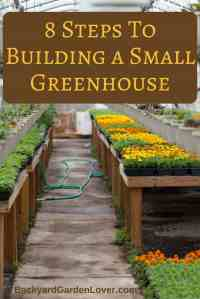 Small Greenhouses For Backyard | Outdoor Goods