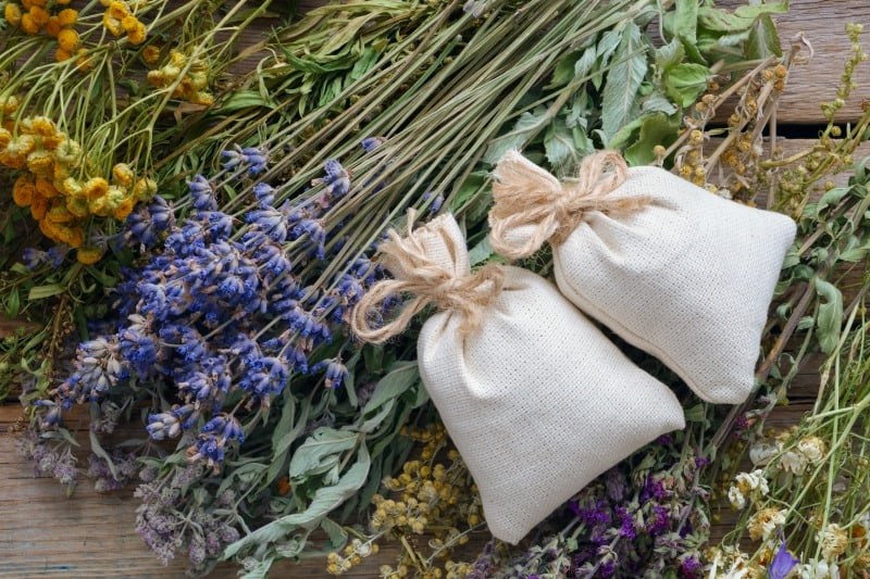 Making Dream Pillows With Herbs From The Garden