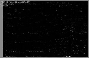 Dust Spots on Sony Sensor