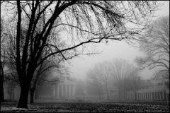 uva_fog
