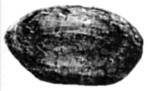 "The ""sling stone"" from Bramford (Suffolk, England)"