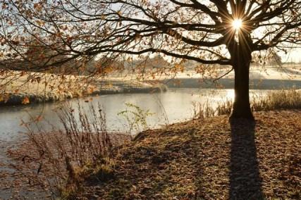 Crondon Pond HKennedy