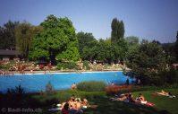 Im Schwimmbad Allenmoos Zrich-Unterstrass