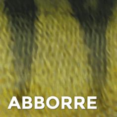 Abborre
