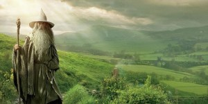 shire banner