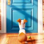 Pets – Vita da Animali, il tenero coniglietto di Kevin Hart nel nuovo teaser