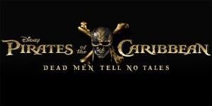 pirati banner
