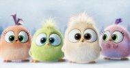 Angry Birds – Il Film: ecco i simpatici auguri di buone feste!