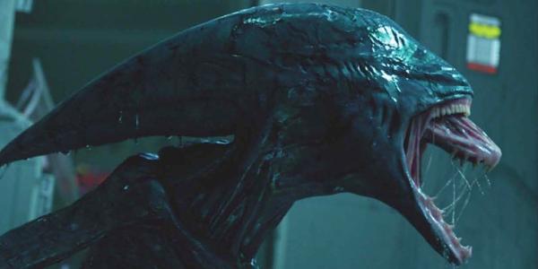 Per Alien: Covenant spoiler sui nuovi terrificanti Xenomorfi
