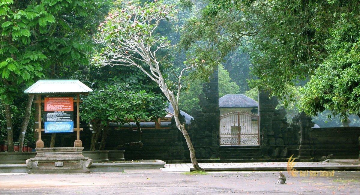 Alas Kedaton Monkey Forest | Bali Places of Interest