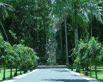 sangeh, monkey, forest, bali, places, interest, sangeh monkey forest, entrance gateway