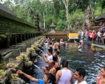 pool, tampak siring, bali, holy, water, temple, tampak siring temple, holy spring temple, places of interest