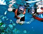 bali, snorkeling, marine, water, sport, activities, bali snorkeling, snorkeling water sport, bali water sport, bali marine activities