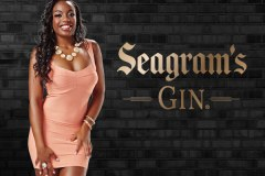 Seagram's Gin Launches 2014 Calendar