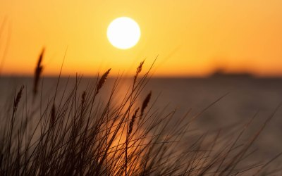 Sun Background Wallpapers HD Backgrounds, Images, Pics, Photos Free Download - Baltana