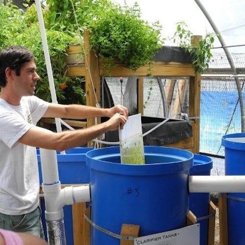 Johns Hopkins-Cylburn Aquaponics Farm Baltimore