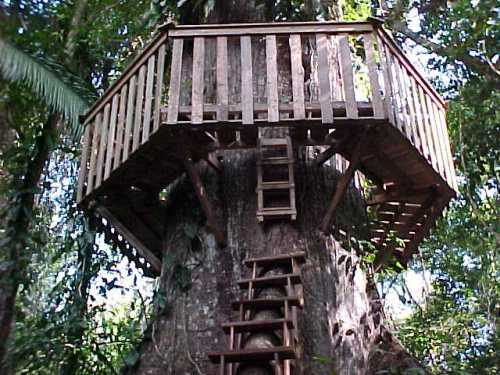 Treehouse_roundwalk