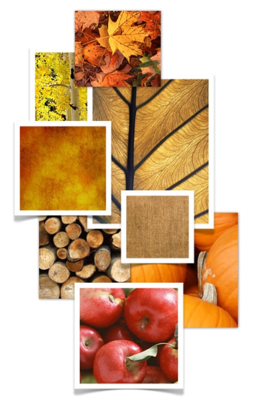 Fall_Collage1