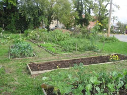 With 14 acres of urban agriculture, this Radnor/Winston community garden off York Rd. is a prime example of sustainability in action.