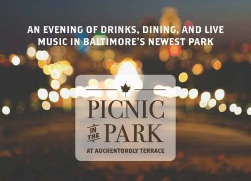Final Picnic in the Park Invitation 2015_Page_1 (1)