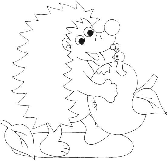 Riccio Disegno Per Bambini Qi21 Regardsdefemmes